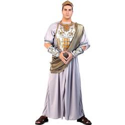 Zeus Adult Costume