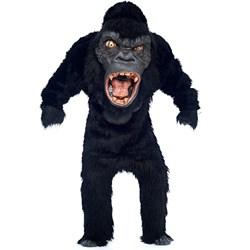 Gorilla Adult