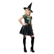 Lime Stripe Witch Teen Costume