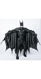 Collector's Batman Adult