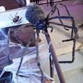 Light Up Gigantic Tarantula