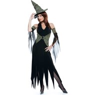 Wicked of Oz Wicked Witch Adult Costume