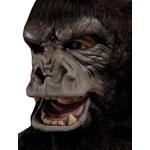 Two Bit Roar Adult Mask