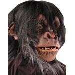 Chimp Adult Mask