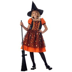 Pretty Pumpkin Witch Girls Costume