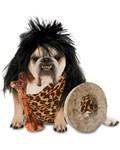 Zelda Cave Dog Costume
