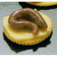 Bloody Banquet Butcher Shop - Finger Food - Worm