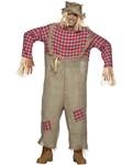 Mr. Scarecrow Costume