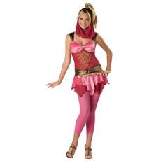 Veiled Genie Teen Costume