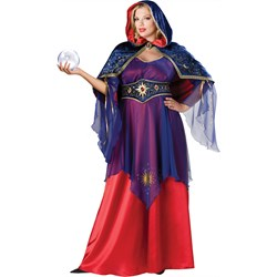 Mystical Sorceress Plus Adult Costume