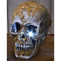Large Skull Strobe - Moss