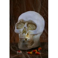Light Up Skull with Sound