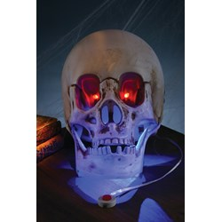 Animated Skull with Light and Sound
