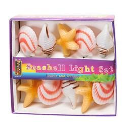 Seashell Light Set