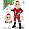 Santa Economy Mascot Adult Costume