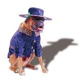 Pet Costume Big Daddy