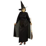 The Wizard of Oz  Wicked Witch  Adult