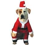 Pet Costume- Santa Claws
