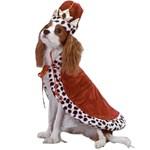 Halloween pets costumes