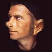 I Heard That! (Elf Ears)