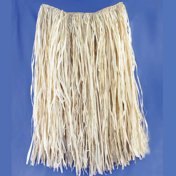 ... Grass Skirts and Coconut Bras from Hawaii . Have fun with a hula skirt