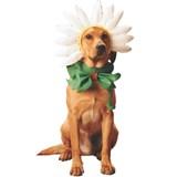 Pet Costume-Daisy Dog