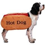 Pet Costume - Hot Dog Medium