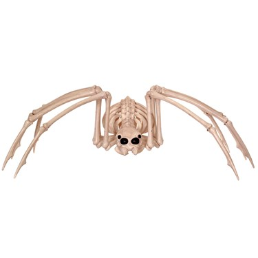 "15"" Skeleton Spider"