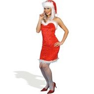 Miss Saucy Santa Adult Standard