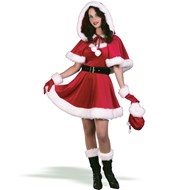 Mrs. Santa Baby Dress Adult Medium/Large