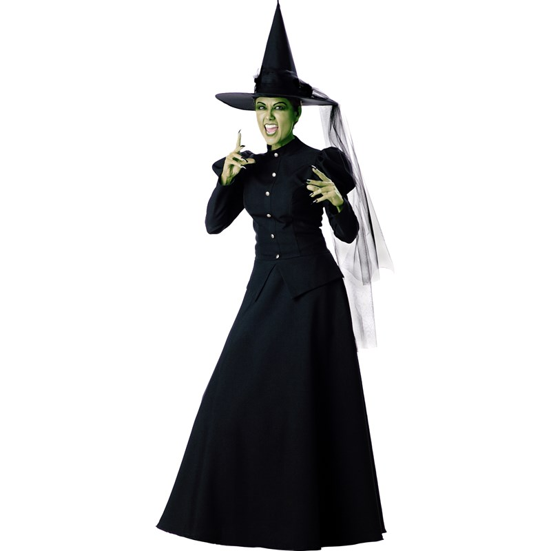 Witch Elite Collection Adult Costume for the 2015 Costume season.