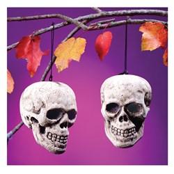 3.25 Skull Head (1 count)