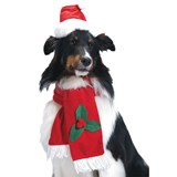 Santa Pet Hat & Scarf for Dogs