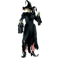 Crashing Witch Elite Collection Adult