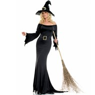 Cauldron Witch  Adult