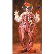 Snazzy/Harpo Hoop Clown  Adult