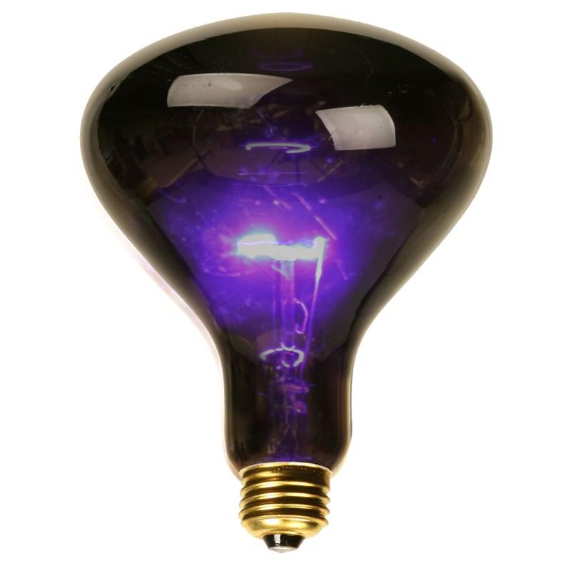 Black Spotlight Bulb (75 Watt) for the 2015 Costume season.