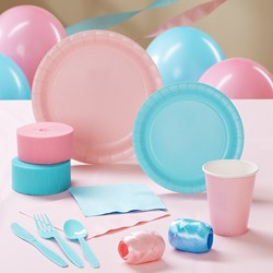 Light Pink and Light Blue Deluxe Party Kit