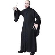 Harry Potter-Voldemort Adult