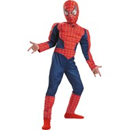 Spider-Man 3 Deluxe Complete Child