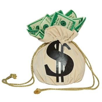 Money Bag Handbag
