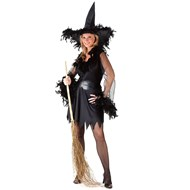 Sexy Feather Witch Adult Costume