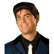 Hairspray Link Larkin Wig