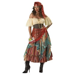 Fortune Teller Elite Collection Adult Costume