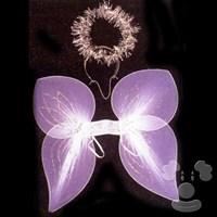 Angel Wing W/Halo