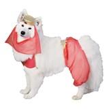 Harem Dog Pet Costume
