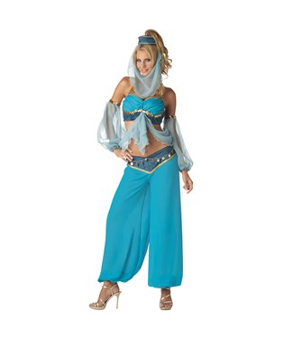 Harems Jewel Elite Collection Adult Costume