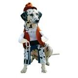 Cowboy Pet Costume