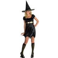 Enchanting Witch Adult Costume