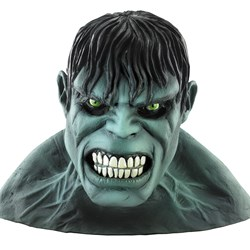 The Incredible Hulk 2008 Movie Deluxe Mask